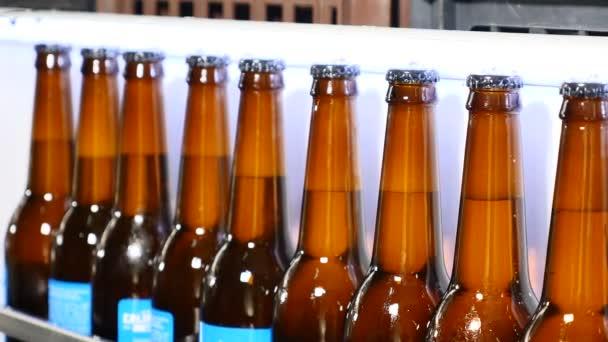 Förderband einer Brauerei - Bierflaschen in Produktion und Abfüllung. Bierflaschen bewegen sich auf Förderbändern in der Bierfabrik. grüne Flaschen auf der automatisierten Fertigungslinie. Bierabfüllanlagen an