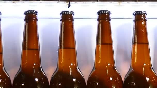 Bierfabrik. Letzter Teil des technologischen Teils der Bierherstellung. Förderband in der Brauerei, Schlange von fertig gefüllten Flaschen auf dem Förderband. 4k
