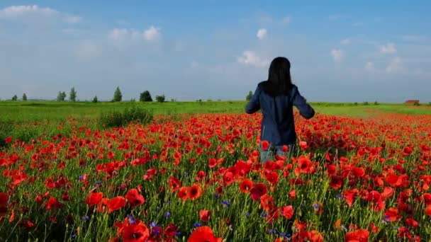 A 59 year old woman in blue clothes stands in the field of poppies turned back. The woman feels relaxed. Summer morning in Ukraine.