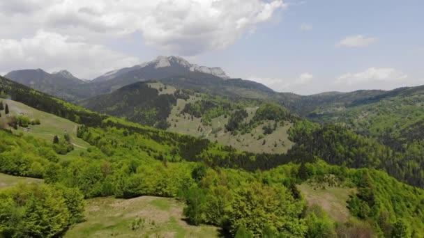 Létání nad jarní Les, letecký pohled na panorama úžasné zelené lesa v Rumunsku