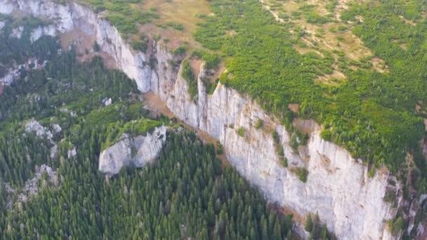 Letecký pohled na horský les a alpské pastviny v létě