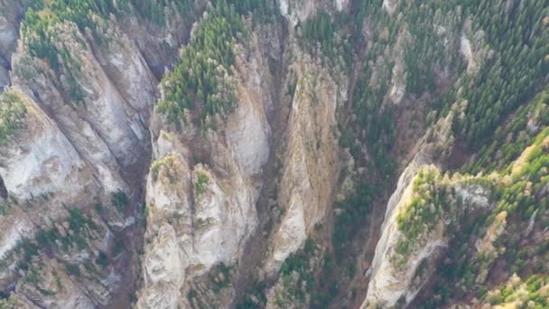 Mountain canyon in summer forest, huge rocks from above