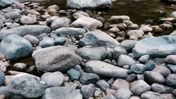 Muž a dva psi kráčejí po skalnatém břehu horské řeky. Podzimní mělká horská řeka. Psi a lidé stěží chodí po kamenech.