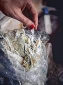 Fényképek vágott lövés a nő könnyezés házi öntött chechil sajt