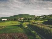 krásné zelené louky, silniční a kopci nedaleko vesnice v Gruzii