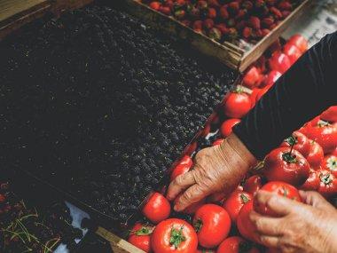cropped image of senior woman choosing tomatoes at georgian market