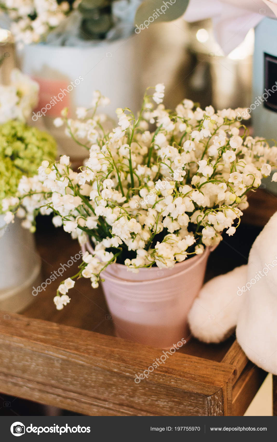 Beautiful Spring Bouquet Tender Lily Valley Flowers Stock Photo