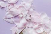 Fotografie okvětní lístky něžně růžové květy a prsten na růžovém pozadí