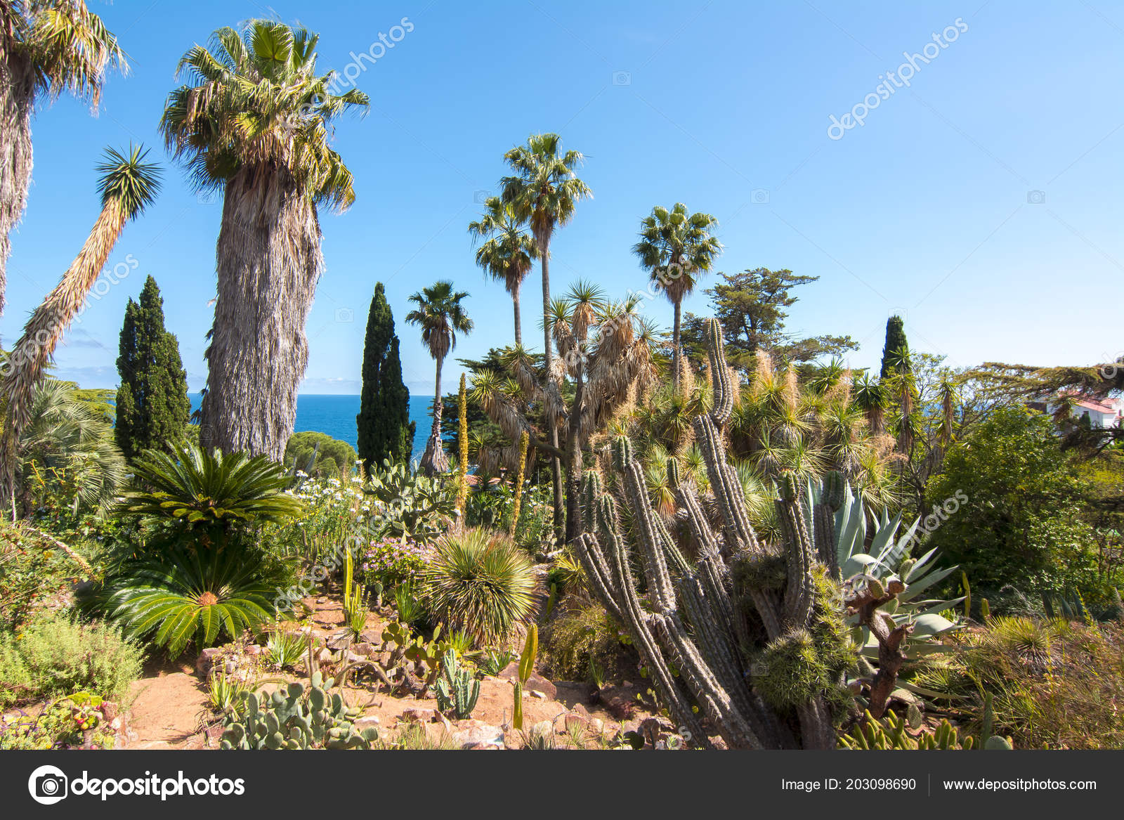 Ortschaften Botanischer Garten Blanes Der Nähe Von Barcelona Spanien