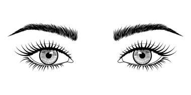 Vector black and white hand-drawn image of eyes with eyebrows and long eyelashes. Fashion illustration. EPS 10.