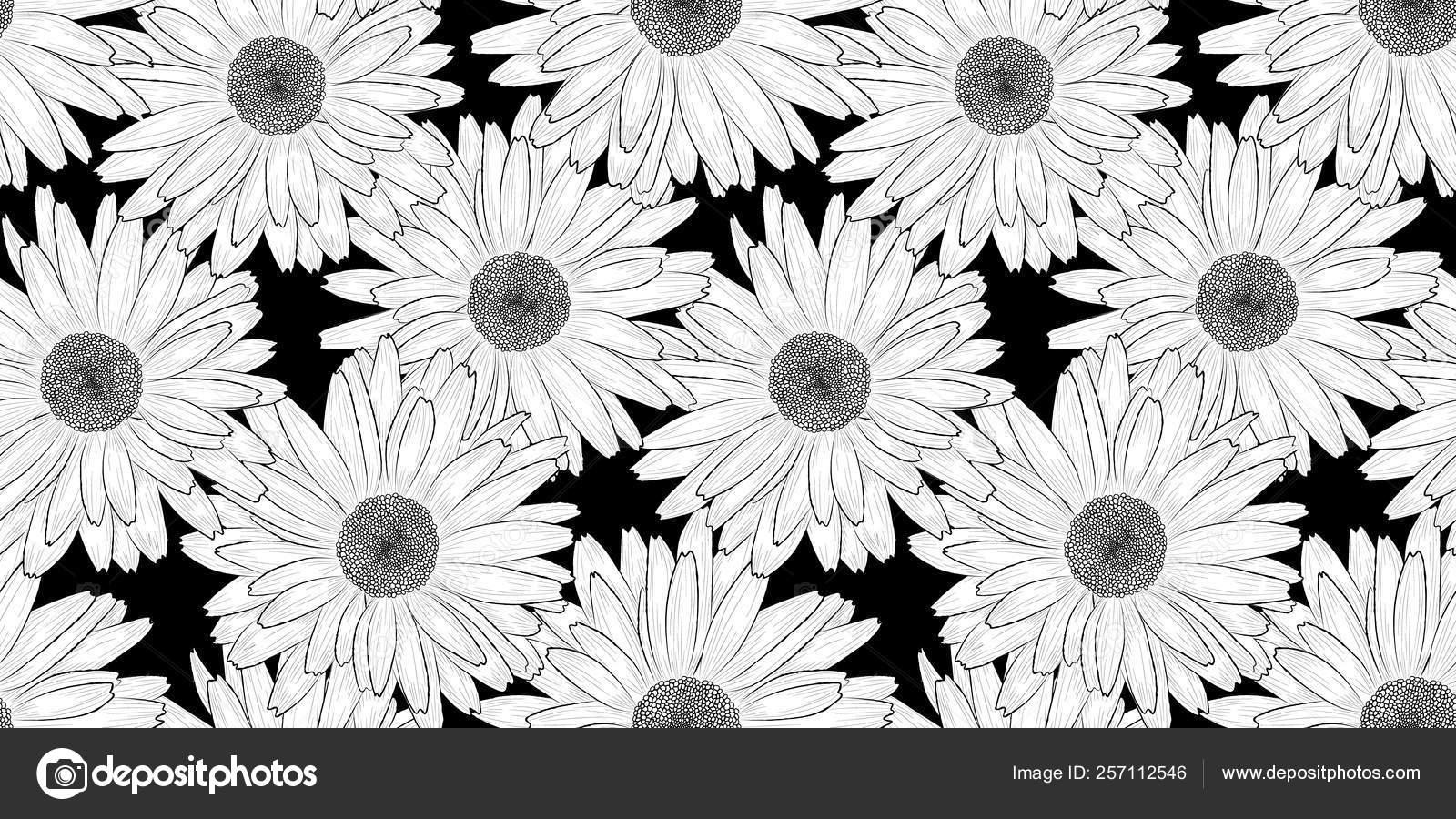 Vector Background Seamless Pattern Black White Hand Drawn