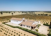 Fotografie Aerial image of Country house in vineyards.