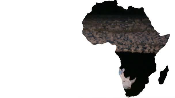 Tvar kontinentu Afrika s rhino walking v noci