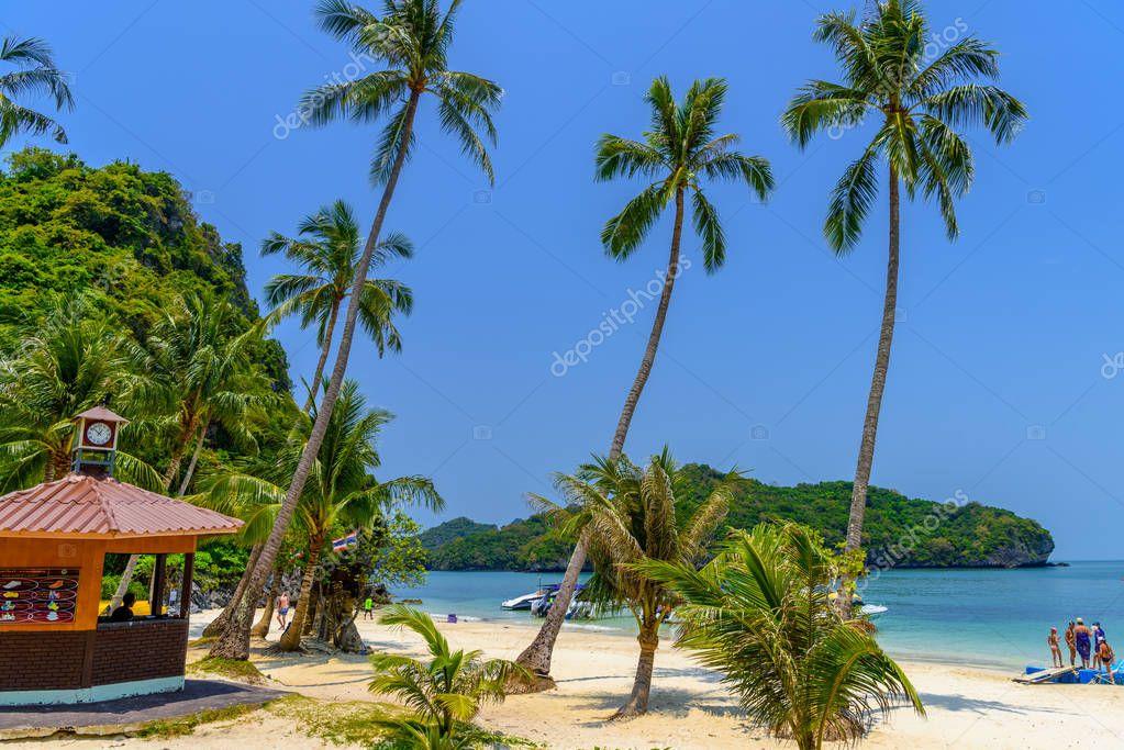 Koh Phaluai, Mu Ko Ang Thong National Park, Gulf of Thailand, Siam, Palms and tropical beach