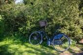 Fotografie Bicycle