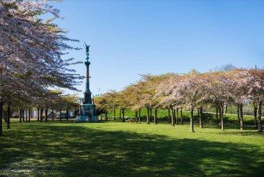 monument between beautiful blooming trees in park, copenhagen, denmark