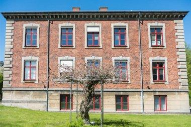 beautiful tree and house at sunny day in copenhagen, denmark