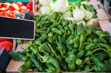 close up view of green peppers, leeks, tomatoes and blank signboard