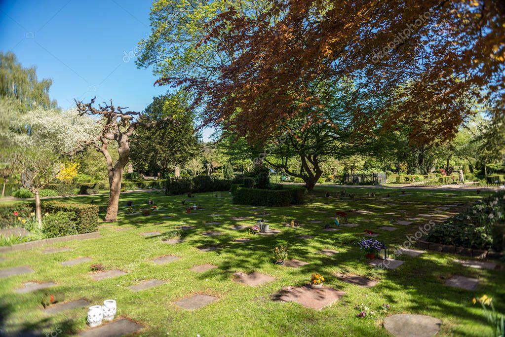 Green lawn with trees in botanical garden of Copenhagen, Denmark stock vector
