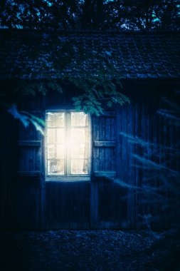 Cabin in forest at night.