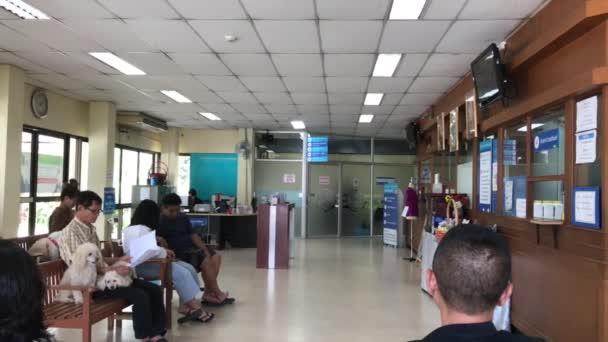 Chiang Mai, Thajsko - 17. května 2018: Malý živočich nemocnice Chiangmai univerzity