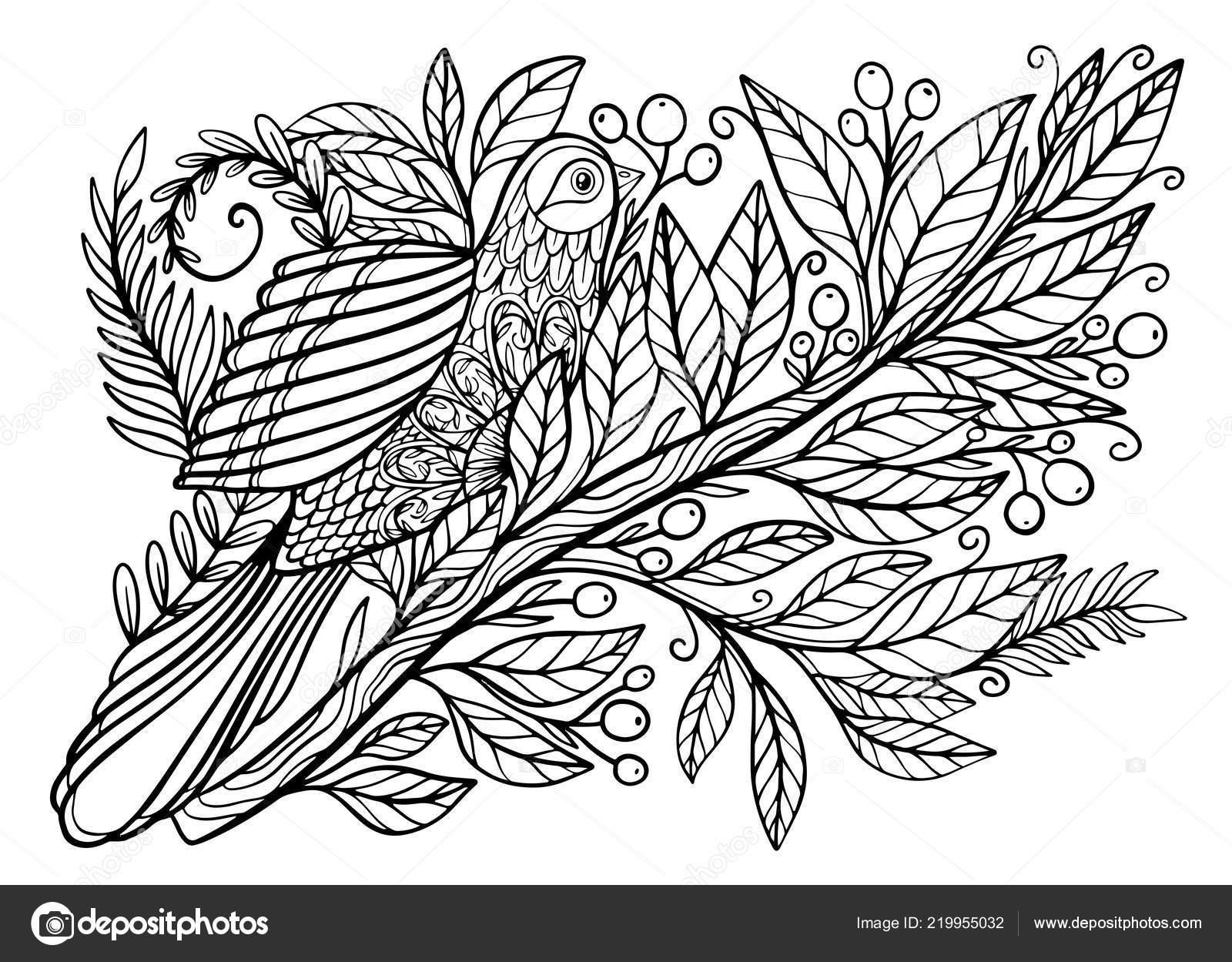 Dibujos Para Colorear Libro Para Colorear Para Adultos Bonita