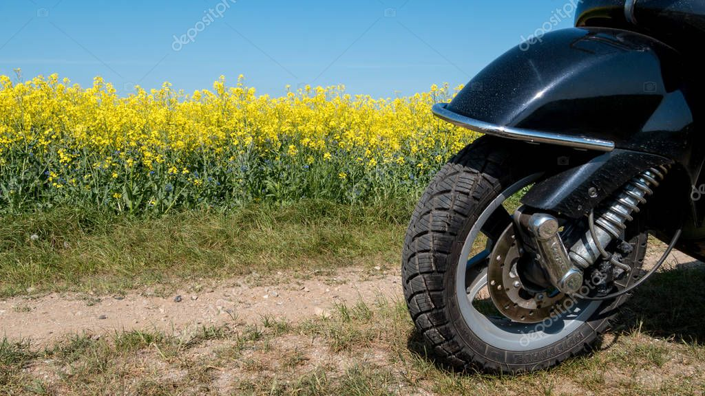 Rape field with front wheel of a black scooter