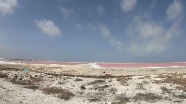 Dolování soli na Bonaire, Nizozemské Antily