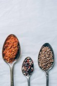 Fotografie top view of indian spices in spoons on white table