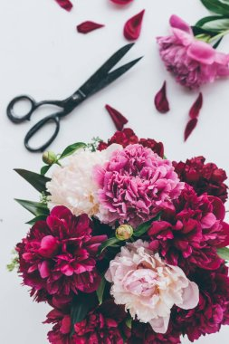 top view of light pink peony bouquet with scissors on white