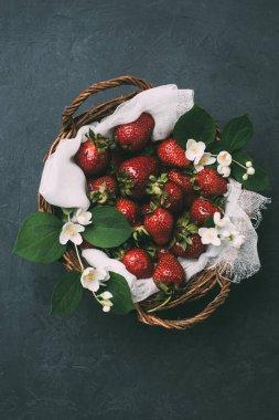 top view of fresh ripe strawberries and beautiful jasmine flowers in basket on black
