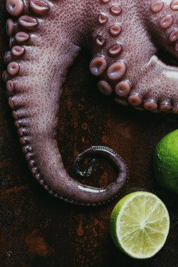 top view of fresh octopus with limes on rusty surface
