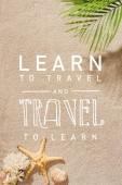 pohled palmovou ratolestí shora nad písečnou pláž s Naučte se cestování a cestování se učit nápisy