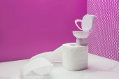 Fotografie toy toilet with real size paper towel roll in miniature pink room