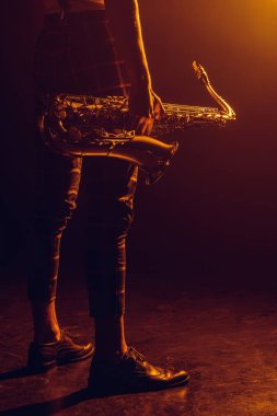 cropped shot of stylish musician holding saxophone