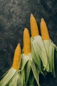 pohled shora na čtyři kukuřičné klasy na šedý tmavý stůl