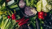 pohled shora červené zelí, chilli papričky, ředkvička a jiné zeleniny na stole