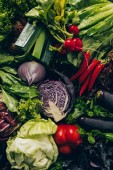 Fotografie top view of red cabbage, green salad, radishes and delicious vegetables on table