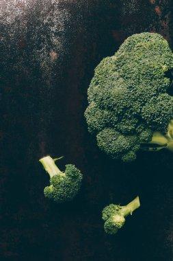 Top view of ripe broccoli on grey dark table stock vector