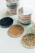 Fotografie selective focus of various grains in plastic containers in modern agro laboratory