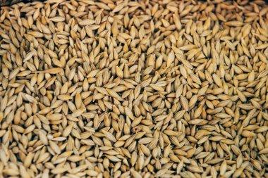 full frame image of pile of grains background