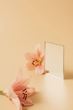 Two lily flowers and mirror on beige table stock vector
