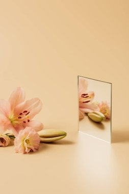 pink lily flowers reflecting in mirror on beige table