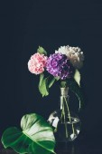 pink, white and purple hortensia flowers in vase with monstera leaf, on black