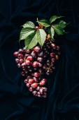 top view of fresh ripe juicy red grapes with green leaves on dark fabric