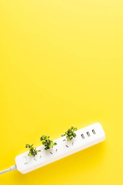 top view of socket outlet with green twigs on yellow background, renewable energy concept