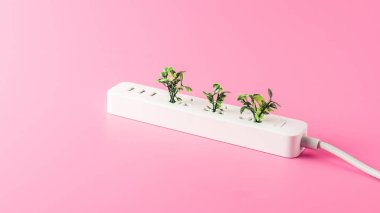close-up view of white socket outlet with green leaves isolated on pink