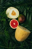 top view of melon, mango and grapefruit on palm leaves