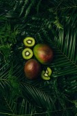 top view of mangos and kiwi slices on palm leaves
