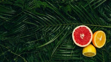 top view of grapefruit, lemon and orange halves on palm leaves with copy space